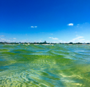Emerald clear water off Captiva Island!