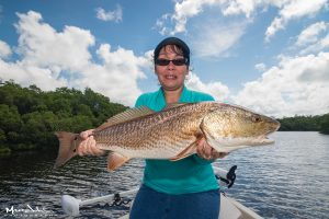Sanibel redfish flats fishing